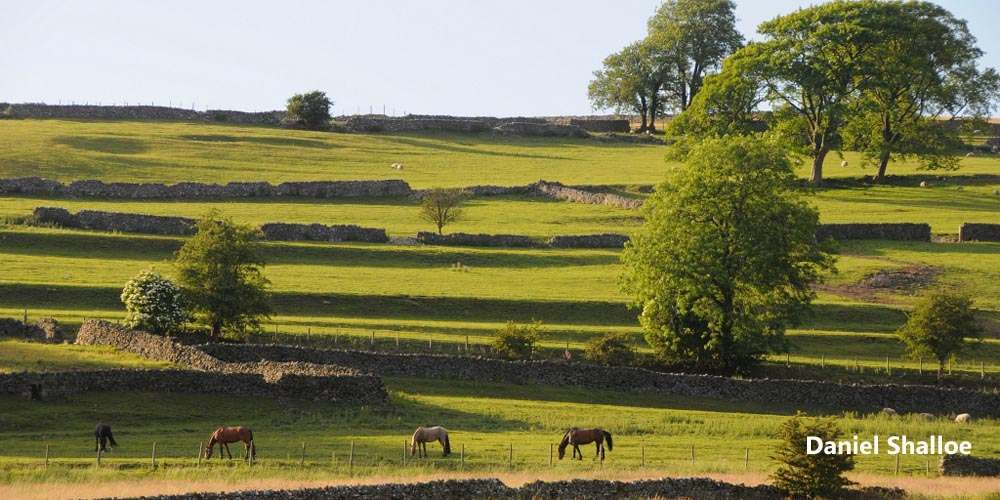 Wharfedale cottages, Appletreewick, Yorkshire Dales holiday accommodation